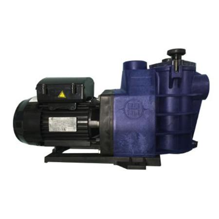 Bomba filtração Hayward Starpump II